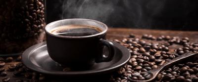 Do terroir à torra: 7 etapas que influenciam o sabor do café