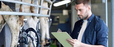 Energia elétrica em fazendas de leite: custos, desafios e soluções
