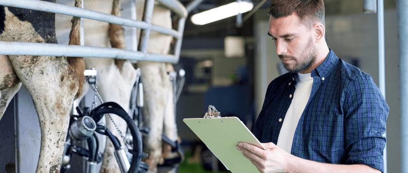 Energia elétrica em fazendas de leite