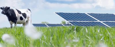 Energia solar em fazendas de leite: investimento e projeção de retorno da solução Ecofarm